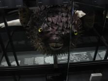 Disseny de solucions antivibratòries al Museu de Ciències Naturals de Barcelona